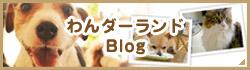 わんダーランドのブログ