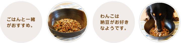 ごはんと一緒がおすすめ。わんこは納豆がお好きなようです。